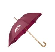 Parapluie bdx
