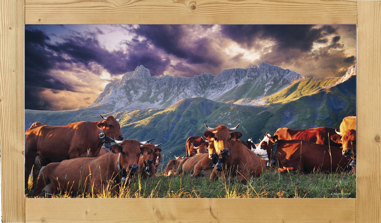 tableau-vaches-couleurssavoie