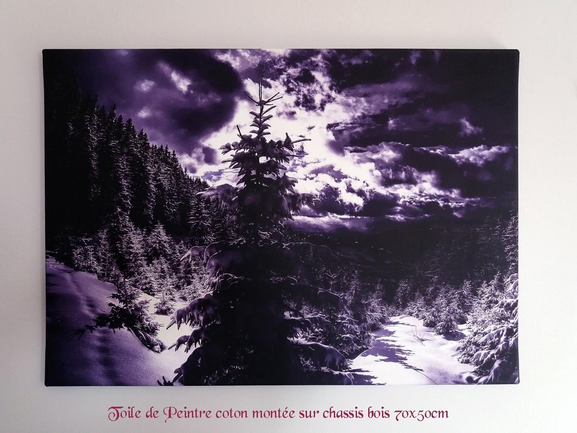 Vignette toile de peintre foret nuit 70x50